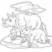 Coloriage Famille de rhinocéros