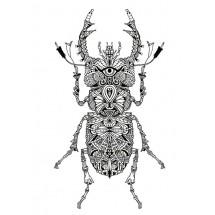 Coloriage Mandala Scarabée
