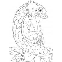 Coloriage Sasuke et son serpent
