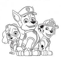Coloriage Chase, Marcus et Stella