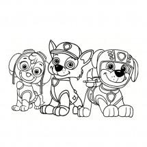 Coloriage Stella, Rocky et Zuma