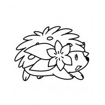 Coloriage Pokémon Shaymin forme Terrestre