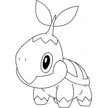Coloriage Pokémon Tortipouss