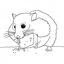 Coloriage Hamster et son fromage