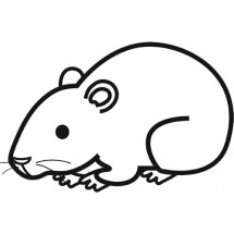Coloriage Hamster